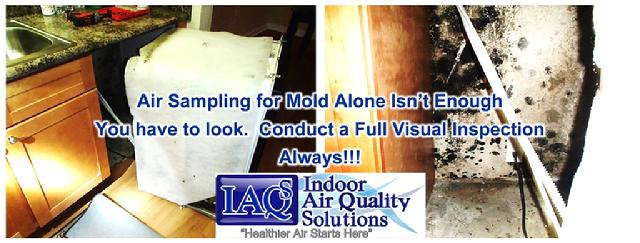 Orlando Mold Visual Inspection Indoor Air Quality Solutions, IAQS